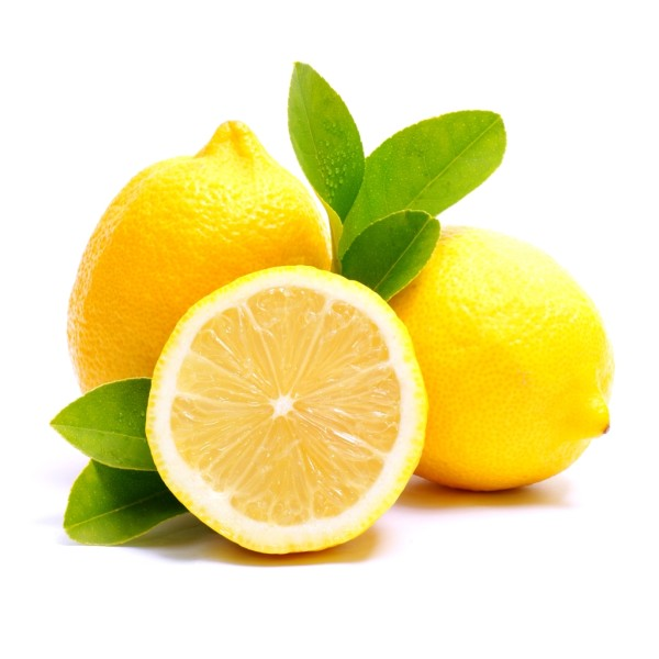 Limon verna - snature